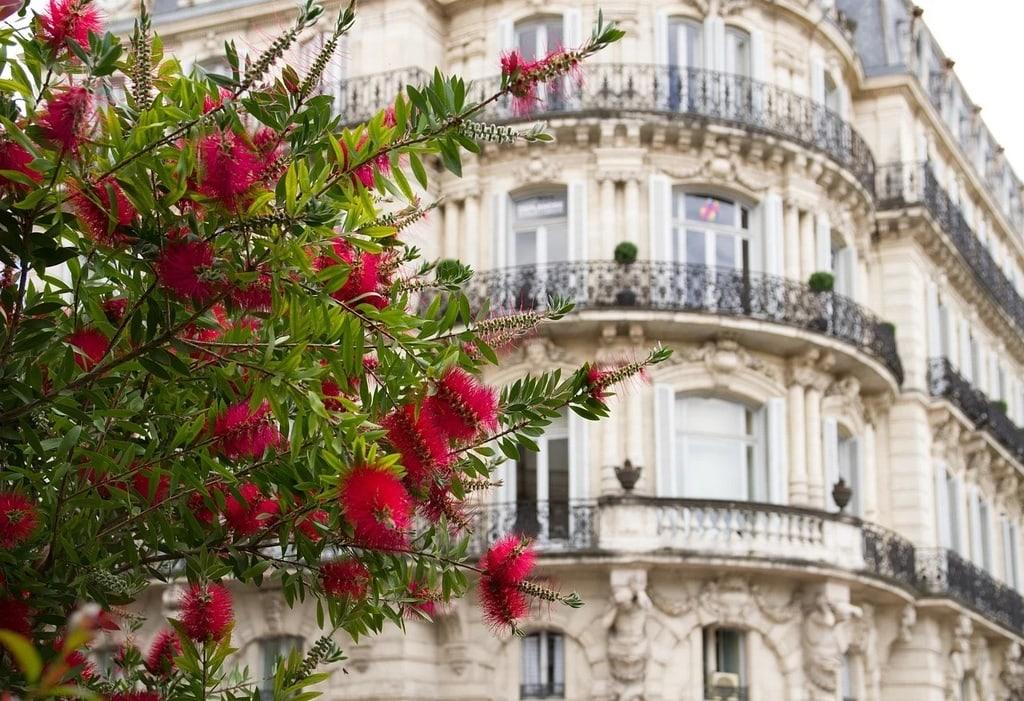 Toulouse : Les événements culturels à ne pas manquer
